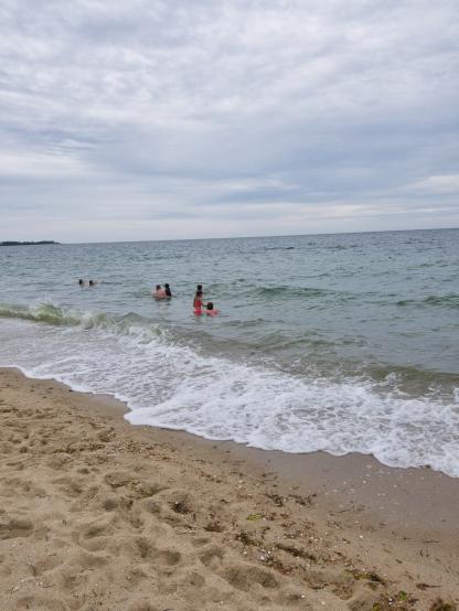 Cape_Cod_beach_10