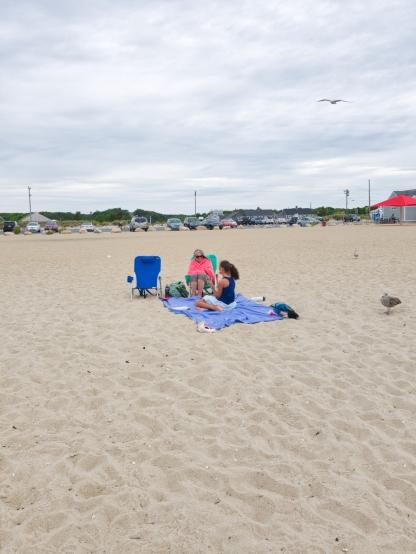 Cape_Cod_beach_14