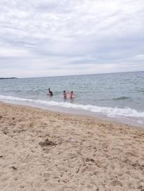 Cape_Cod_beach_6