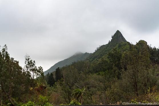 Nu'Uanu_Pali_Lookout-9213