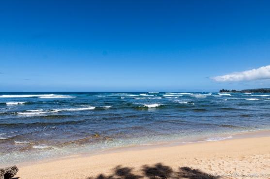 Oahu_North_Shore-9047