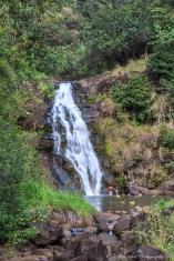 Oahu_Waimea_Falls -9096