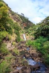 Oahu_Waimea_Falls -9097
