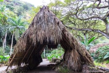 Oahu_Waimea_Falls -9132