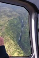 Blue Hawaii-9432