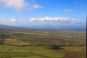 Blue Hawaii-9479