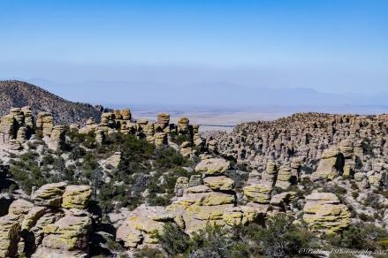 Chiricahua_Monument-0229