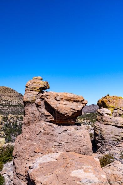 Chiricahua_Monument-0230