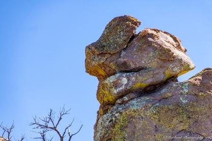 Chiricahua_Monument-0231