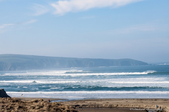 Dillan_beach-8667