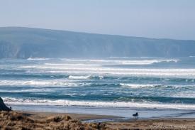 Dillan_beach-8672