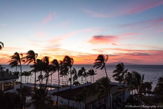 Hotel_Maui_sunset-9858