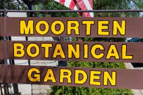 Moorten_Botanical_Garden-0152