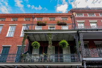 New_Orleans-0788