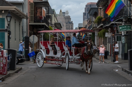 New_Orleans-0823