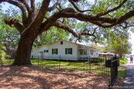 Oak_Alley_Plantation-0758
