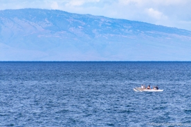 Wailea_Beach_Resort_Maui-9863