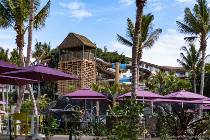 Wailea_Beach_Resort_Maui-9869