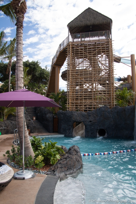 Wailea_Beach_Resort_Maui-9883