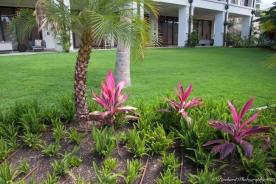 Wailea_Beach_Resort_Maui-9897