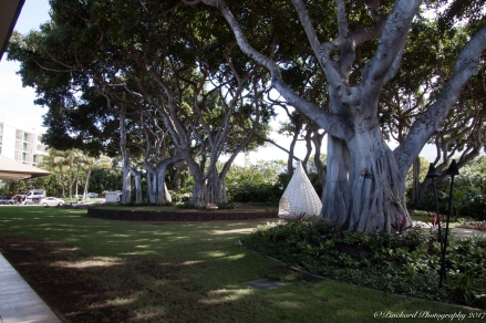 Wailea_Beach_Resort_Maui-9900