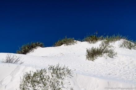 Whitesands_NM-0396